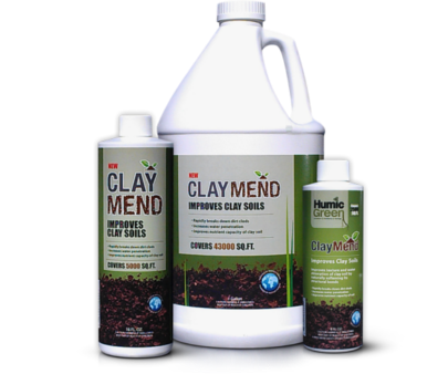 fall-savings-claymend